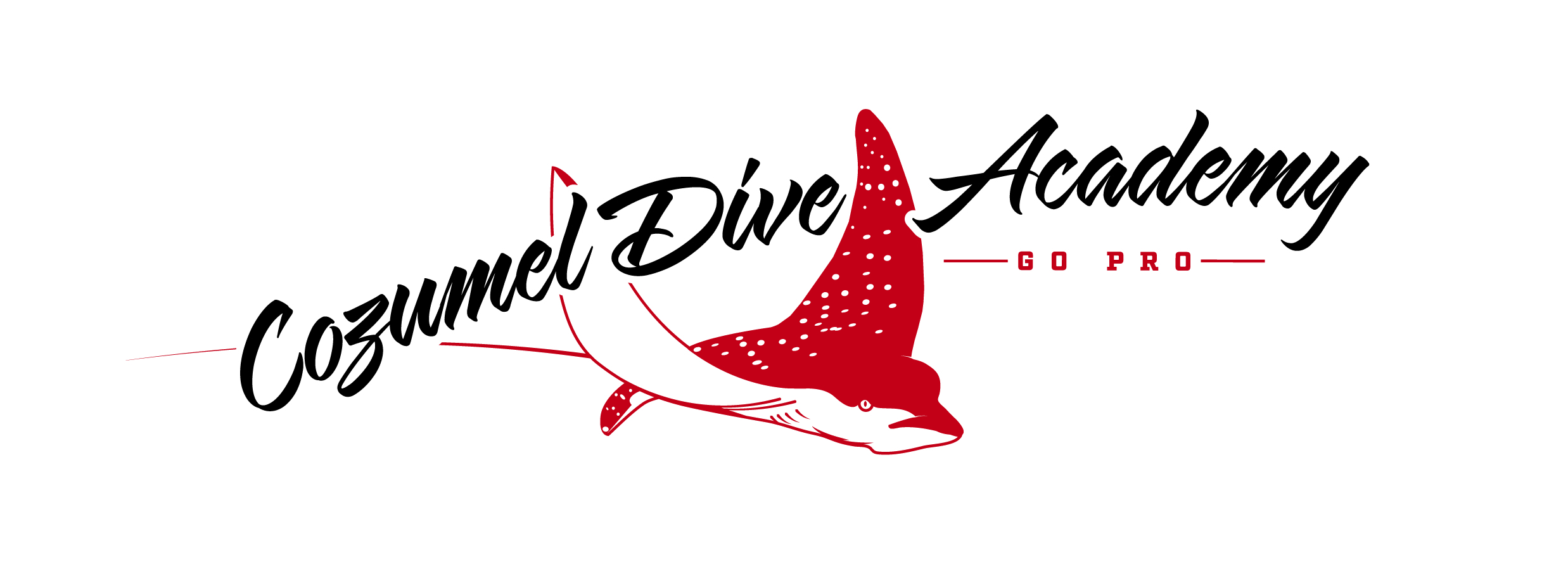 COZUMEL DIVE ACADEMY
